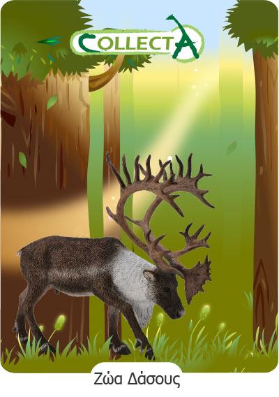 Ζώα Δάσους Collecta
