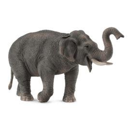 CollectA Ασιατικός Ελέφαντας (88486)