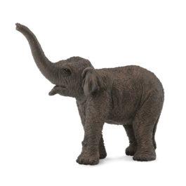 CollectA Ασιατικό Ελεφαντάκι (88487)