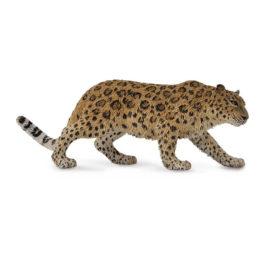 CollectA Λεοπάρδαλη του Αμούρ (88708)