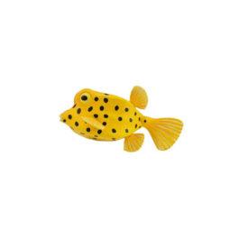 CollectA Κίτρινο Ψάρι Κουτί (88788)
