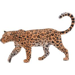 CollectA Αφρικανική Λεοπάρδαλη (88866)