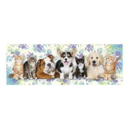 Dino Παζλ Σκύλοι & Γάτες Νέον 150 Τεμάχια (39327)