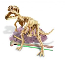 4Μ Ανασκαφή Τυραννόσαυρος Ρέξ (03221-4M0007)