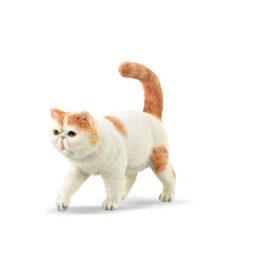 CollectA Εξωτική Κοντότριχη Γάτα (88937)