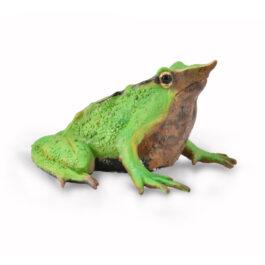 CollectA Βάτραχος Του Δαρβίνου (88938)