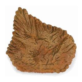 CollectA Εύρημα – Ραχιαία Πλάκα Στεγόσαυρου Σε Κουτί (89286)